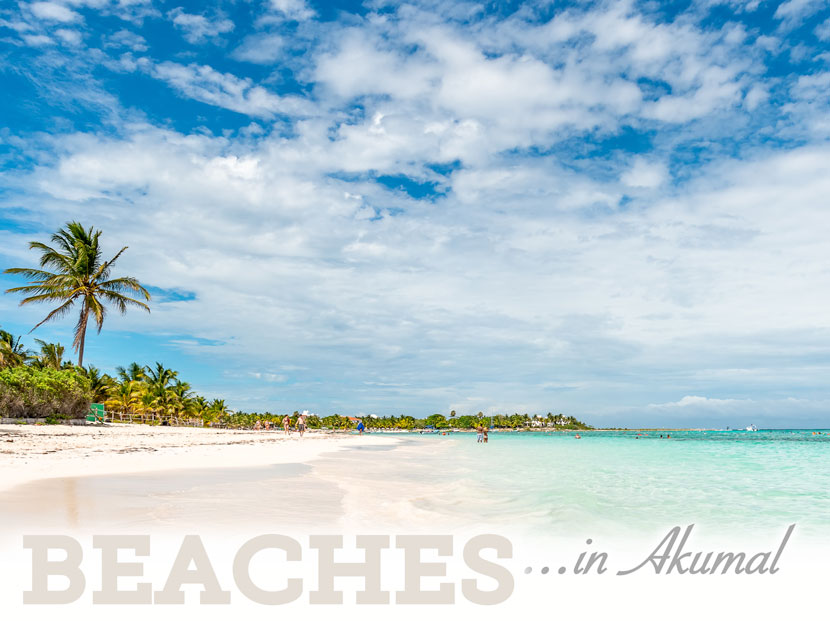 beaches-header-830